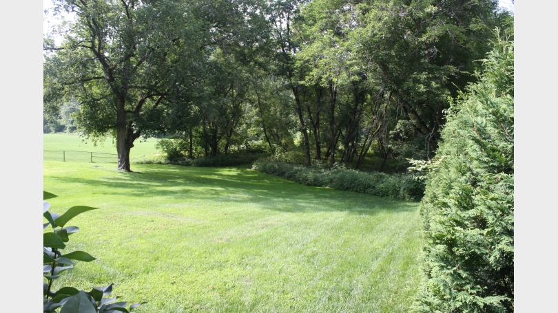Backyard_Maple_St_Apt