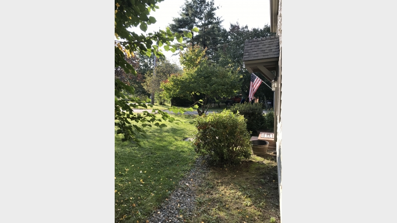 Front Yard