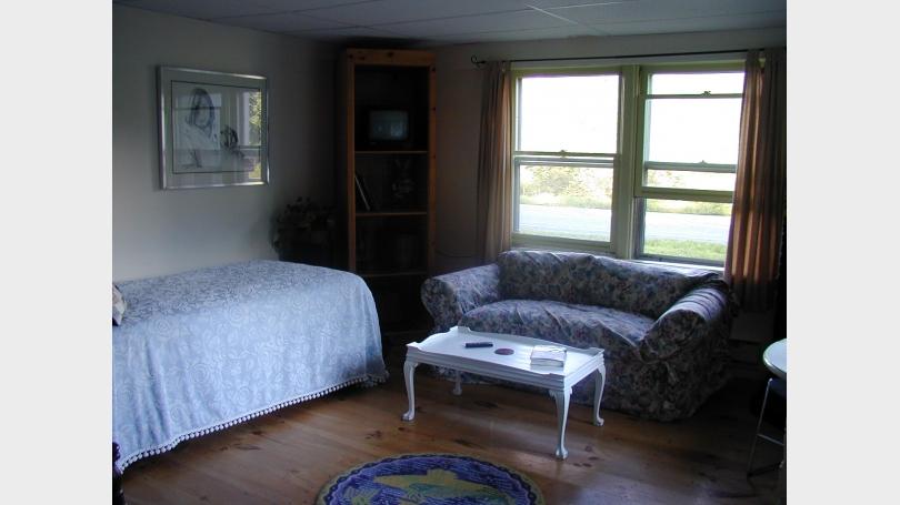 lower apartment livingroom