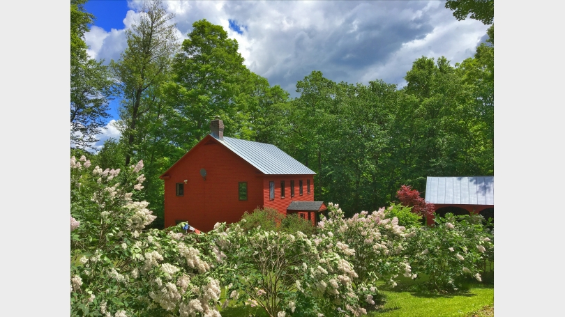 Big Red House Lilacs